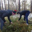 Meeskondlik orienteerumismäng
